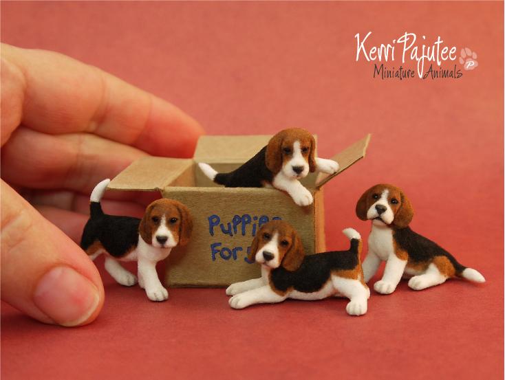 Beaglepups