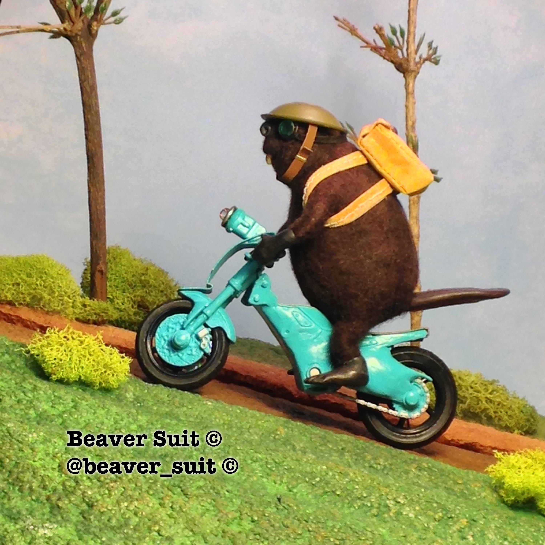beaversuit1