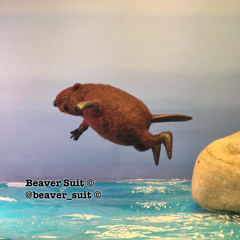 beaversuit4